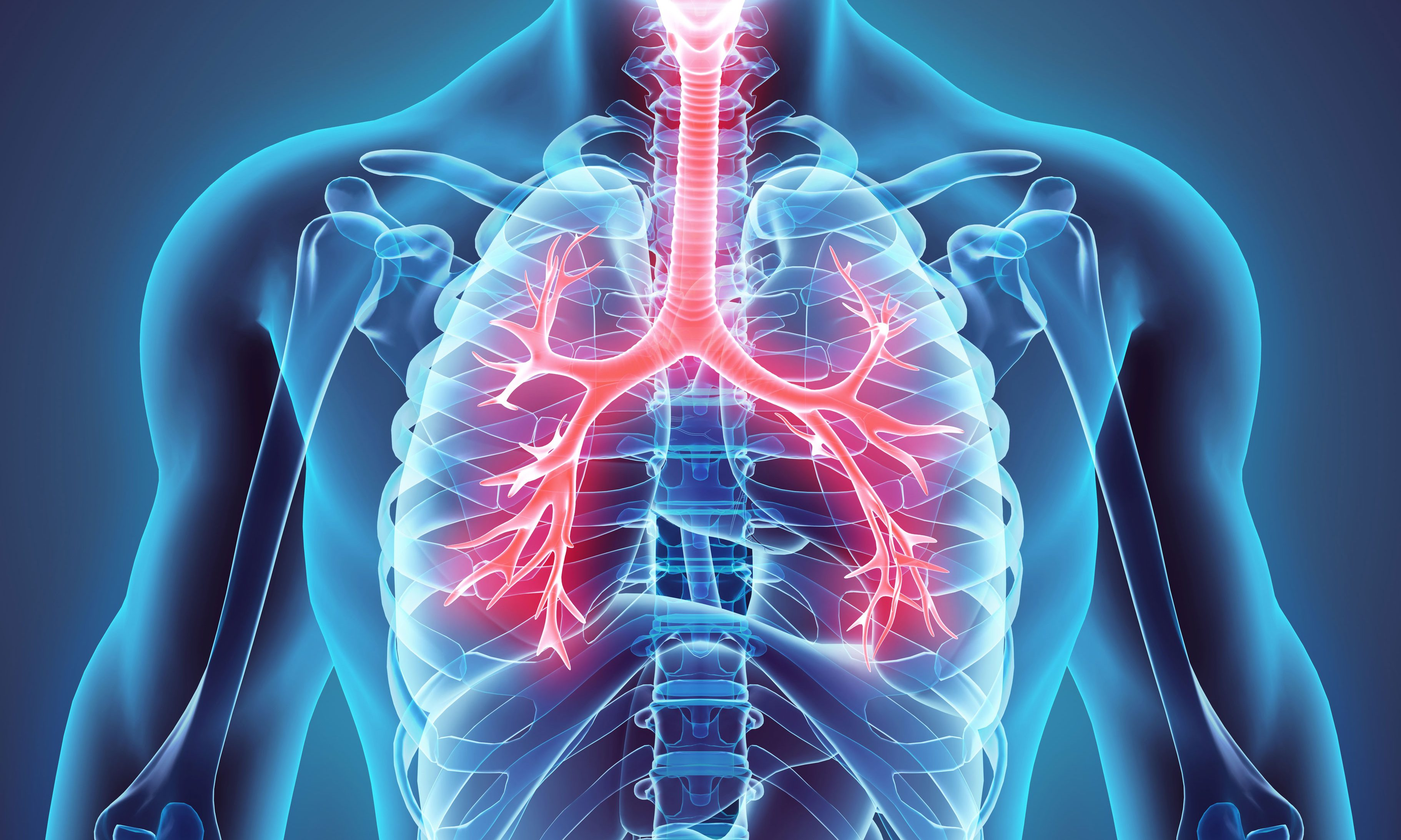 Healthy Lung